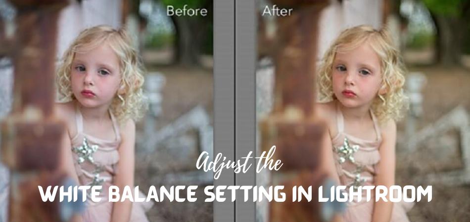 Adjust the White Balance Setting in Lightroom