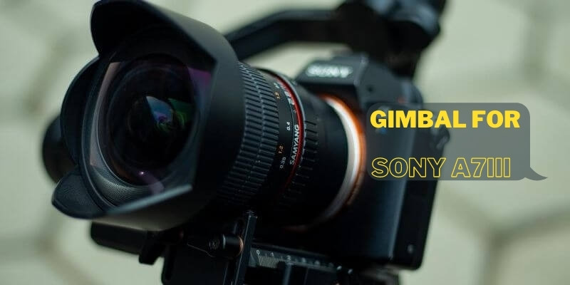 Best Gimbal for Sony A7iii