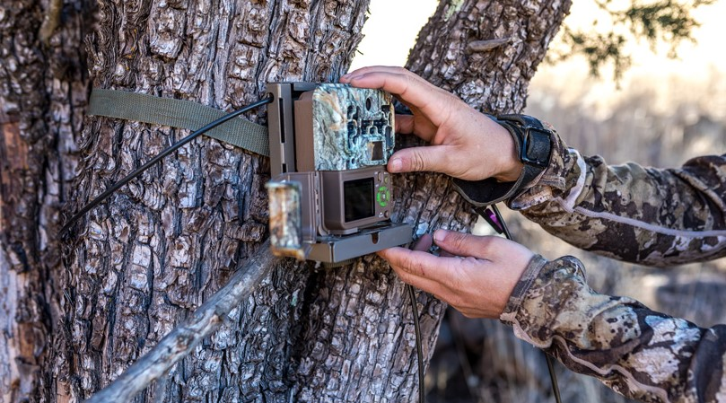 Camera Settings for Trail Cameras